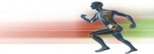 kinesiology doncaster manchester